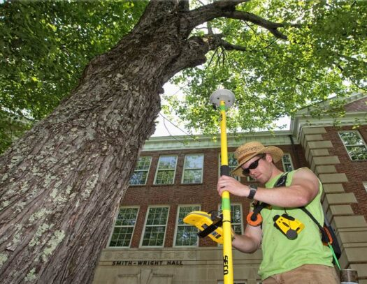 Arborist Consultations-Country Club FL Tree Trimming and Stump Grinding Services-We Offer Tree Trimming Services, Tree Removal, Tree Pruning, Tree Cutting, Residential and Commercial Tree Trimming Services, Storm Damage, Emergency Tree Removal, Land Clearing, Tree Companies, Tree Care Service, Stump Grinding, and we're the Best Tree Trimming Company Near You Guaranteed!