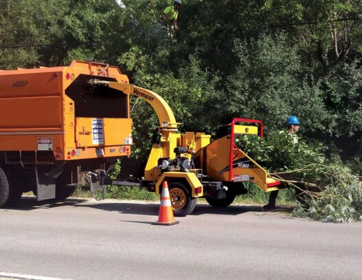 Commercial Tree Services-Country Club FL Tree Trimming and Stump Grinding Services-We Offer Tree Trimming Services, Tree Removal, Tree Pruning, Tree Cutting, Residential and Commercial Tree Trimming Services, Storm Damage, Emergency Tree Removal, Land Clearing, Tree Companies, Tree Care Service, Stump Grinding, and we're the Best Tree Trimming Company Near You Guaranteed!